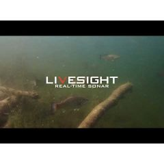 Sonda Lowrance LiveSight