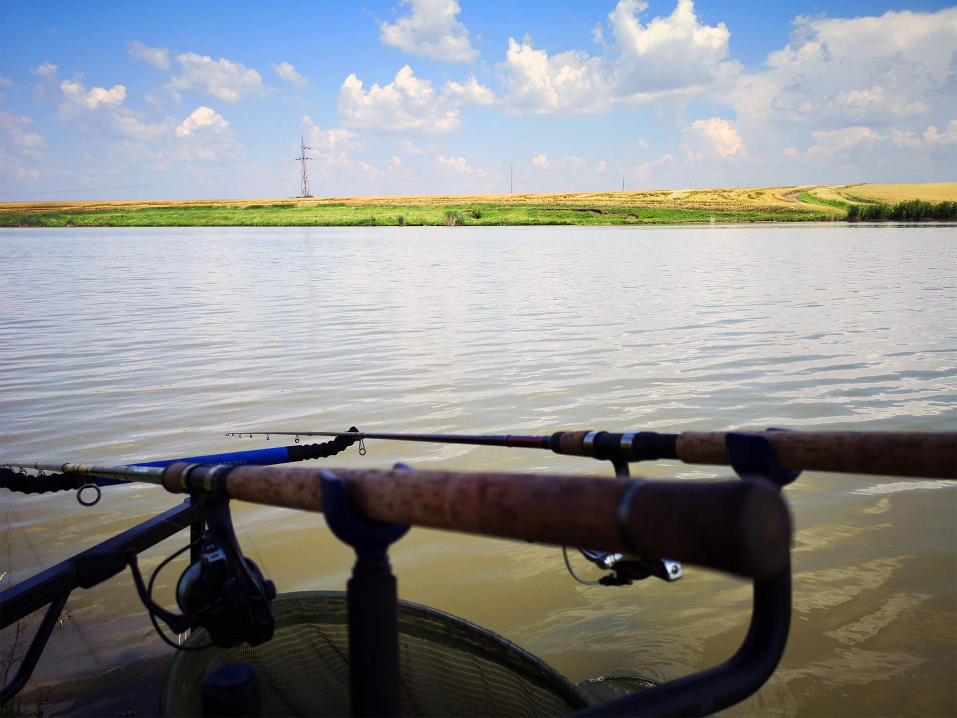 balti de pescuit la feeder
