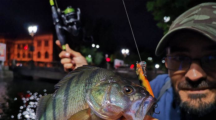 rapala - count down