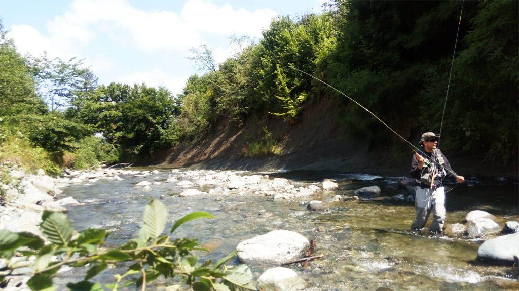 pescuit la uscate