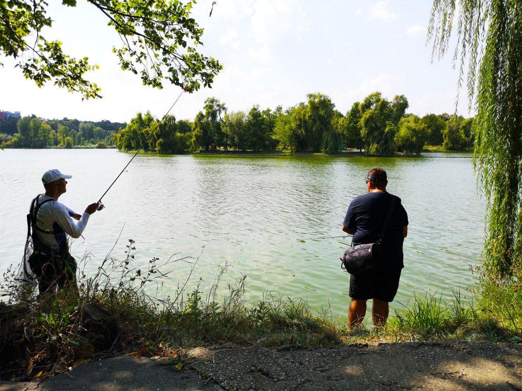 detaliu lacul tineretului