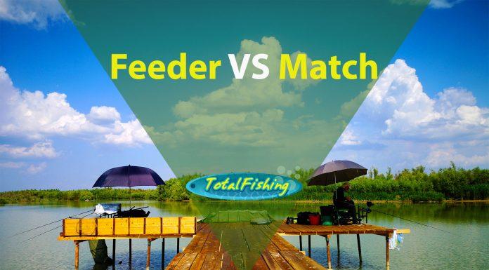 feeder vs match