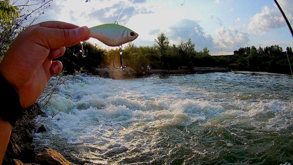 pescuit la somn- naluca dedicata