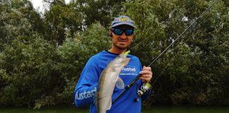 jigging pescuit la salau