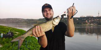 Pescuit la rapitor pe Dunare la avat