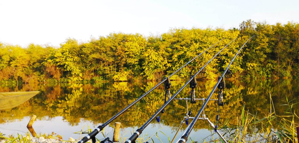 lansete pentru pescuit la crap