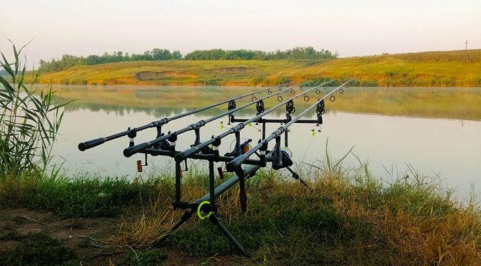 pescuit la crap pe lac cu retinere