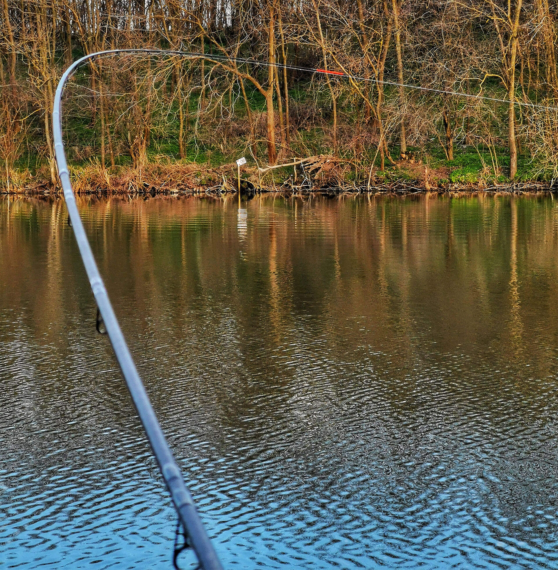 drill in pescuit la feeder pe Dyno Lake