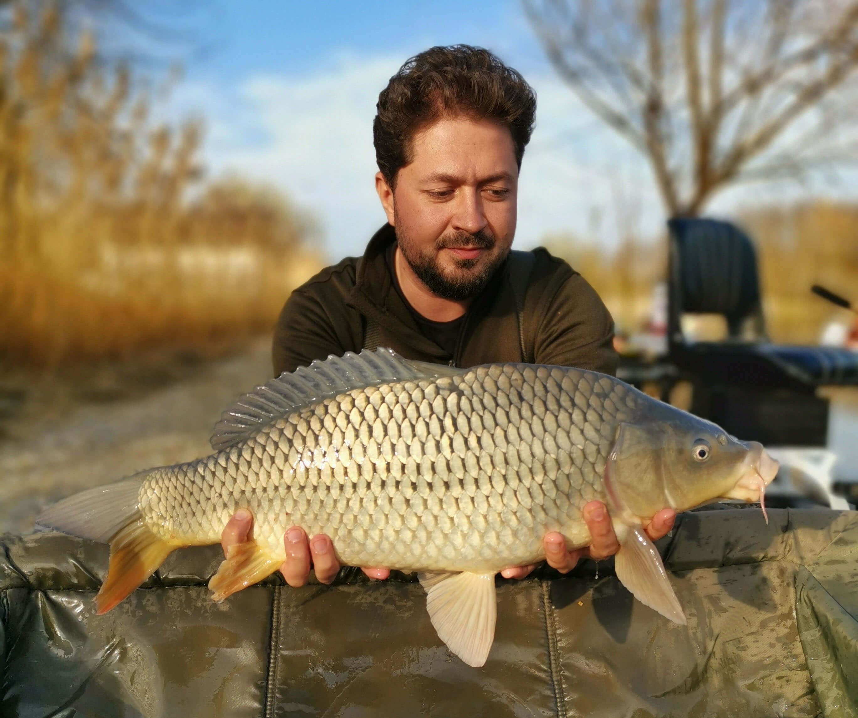 crap comun pescuit la feeder pe Dyno Lake