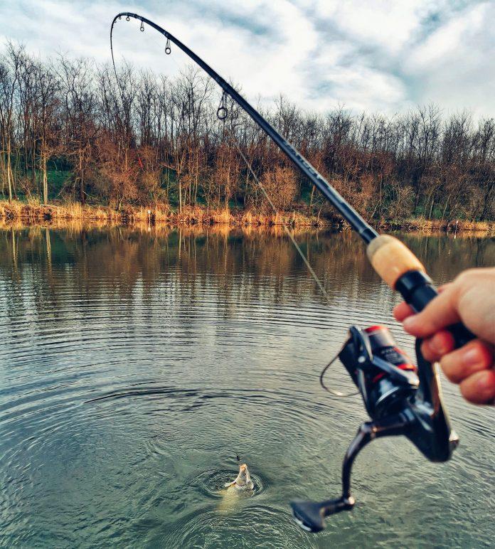 partida de pescuit la feeder pe Dyno Lake