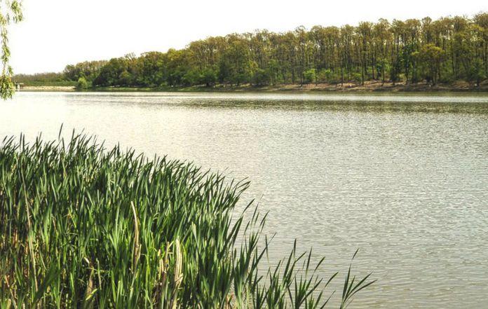 Balti de pescuit 2021 Lacul Cetariu