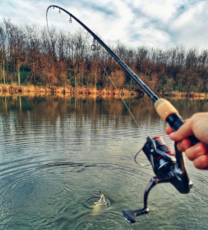 balta de pescuit la feeder Dyno Lake