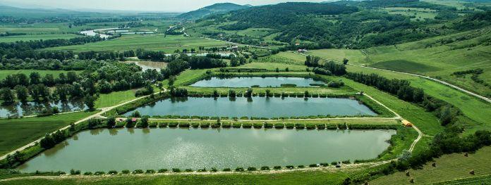 balti de pescuit 2021 la feeder Valea lui Mihai