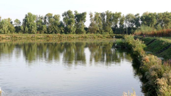 lacul de pescuit la feeder Valcroft