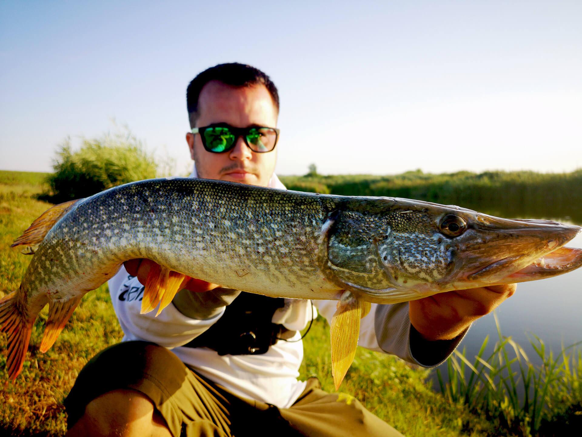 captura pescuit la stiuca pe Creata 1
