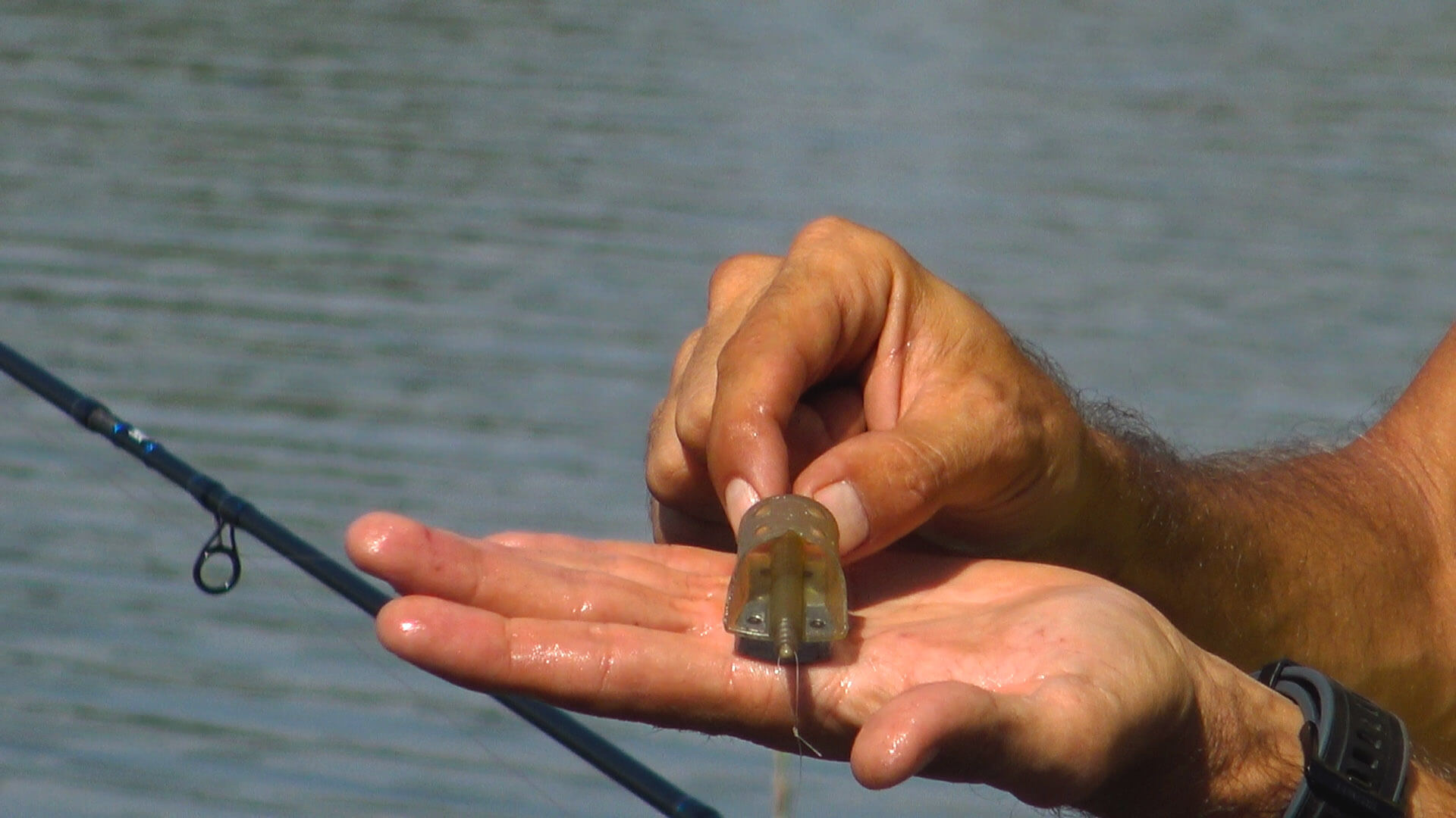 momitor pescuit la crap la pellet feeder