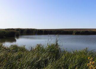 lac de pescuit