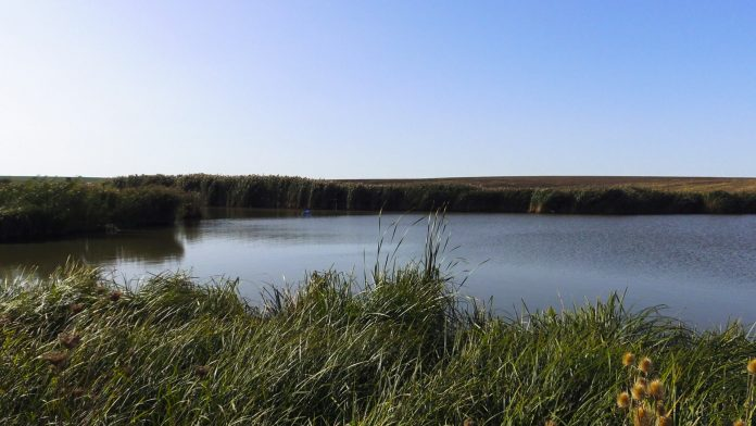 lac nou de pescuit la method feeder