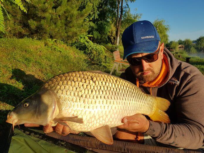 captura crap in pescuitul la feeder