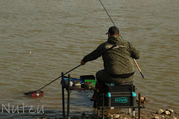 echipamet pescuit la feeder