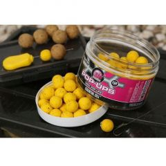 Boilies Mainline Pop-Up Mini Essential Cell