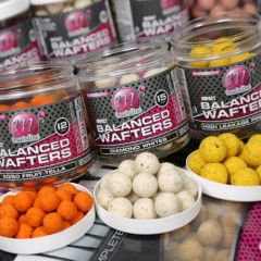 Boilies Mainline High Impact Balanced Wafters Spicy Crab 12mm