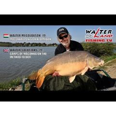 Lanseta feeder Serie Walter World Champion II Carp Feeder 4.20m/120g