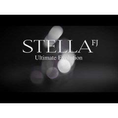 Mulineta Shimano Stella C3000 MHG FJ