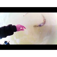 Lanseta Delphin Toxic Spin 2.40m/7-30g