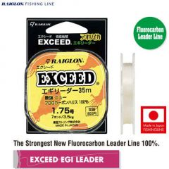 Fir fluorocarbon Raiglon Exceed Egi Leader 0.330mm/8kg/35m