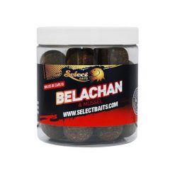 Boilies Select Baits Critic Echilibrat Belachan 20mm