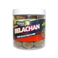 Boilies pentru carlig Select Baits Belachan 20mm
