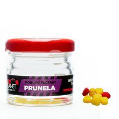 Porumb artificial Senzor - Prunela (Pruna)